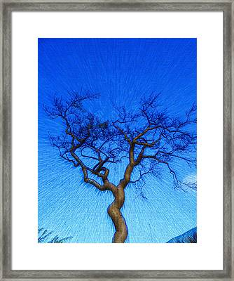 Dance Of The Dawn Framed Print