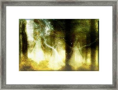 Dance Of The Fairies Framed Print by Gun Legler