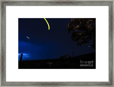 Dance Of The Firefly Framed Print by Thomas R Fletcher