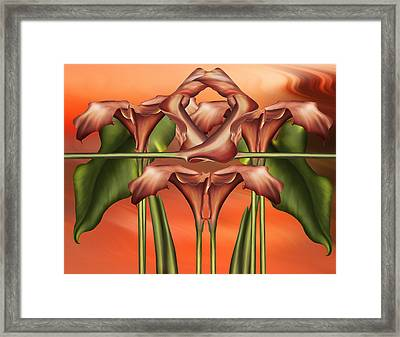Dance Of The Orange Calla Lilies II Framed Print by Georgiana Romanovna