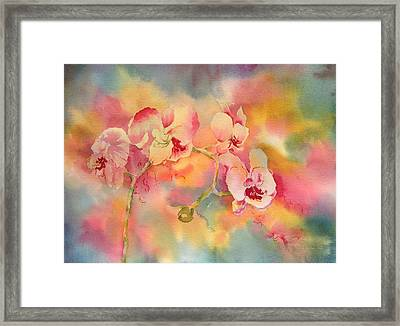 Dance Of The Orchids Framed Print