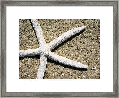 Dance Of The Starfish Framed Print