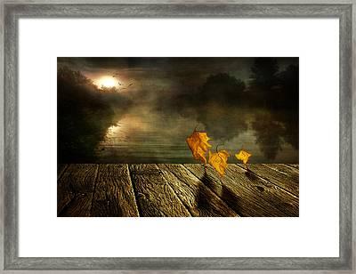 Dance To The Sun Framed Print