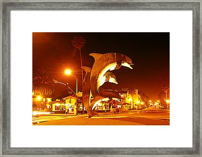Dancing Dolphins At Night Framed Print
