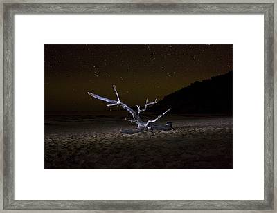 Dancing Drifter Framed Print by Brent L Ander
