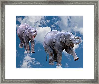 Dancing Elephants Framed Print