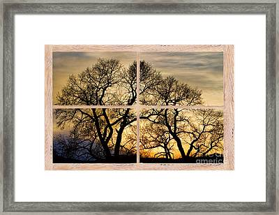 Dancing Forest Trees Picture Window Frame Photo Art View Framed Print by James BO  Insogna