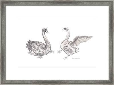 Dancing Geese Framed Print by John Keaton
