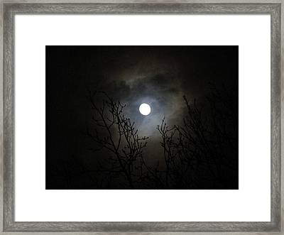 Dancing In The Moonlight Framed Print by Rosita Larsson
