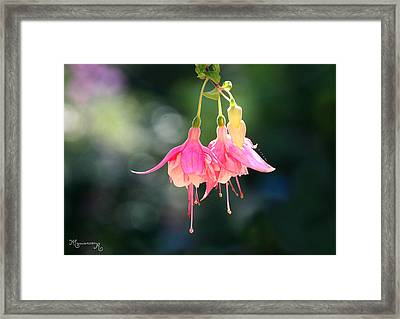 Framed Print featuring the photograph Dancing In The Wind by Mariarosa Rockefeller