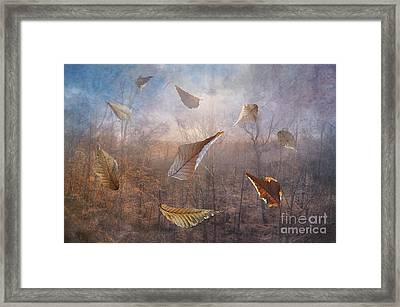 Dancing Leaves Framed Print by Larry Braun