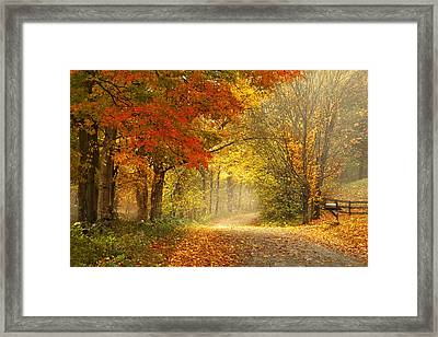Dancing Leaves Framed Print by Magda  Bognar