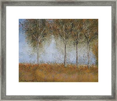 Dancing Leaves Framed Print by Tim Townsend