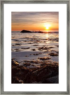Dancing On The Tide Framed Print by Jeff Sinon