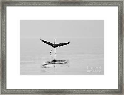 Framed Print featuring the photograph Dancing On The Water by Jay Nodianos