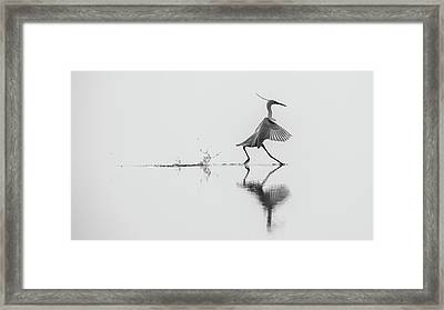 Dancing On The Water Framed Print
