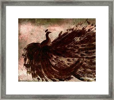 Dancing Peacock Grey Framed Print by Anita Lewis