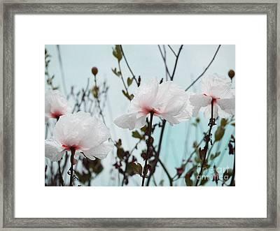 Dancing Poppies Framed Print by Irina Wardas