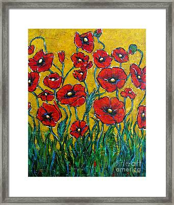 Dancing Poppies Framed Print by Vickie Fears