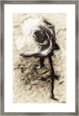 Dancing Rose Framed Print by Ron Regalado