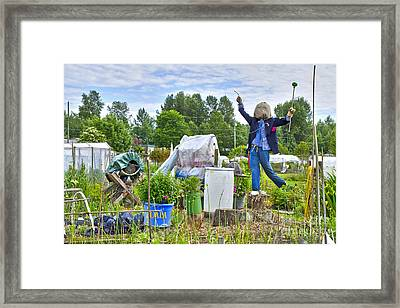 Framed Print featuring the photograph Dancing Scarecrow In The Garden by Maria Janicki