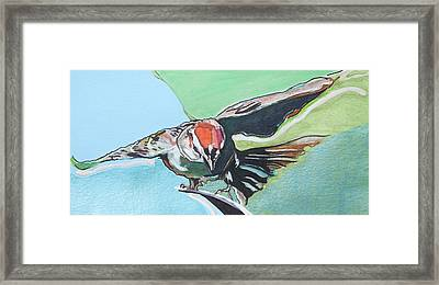 Dancing Sparrow Framed Print