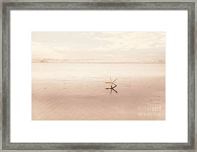 Dancing Starfish Beach Photograph Framed Print by Sylvia Cook