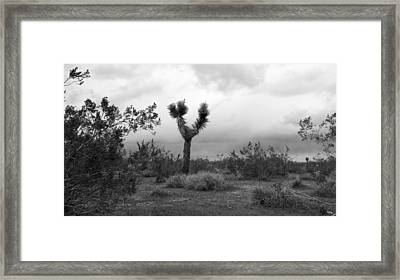 Dancing Though Its Gray Framed Print