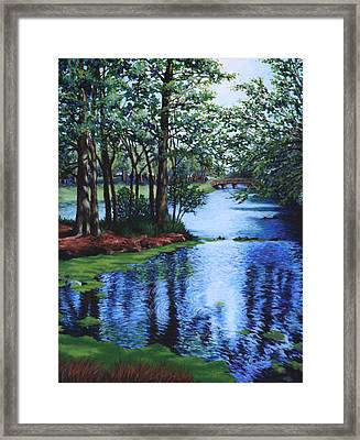 Dancing Waters Framed Print by Penny Birch-Williams