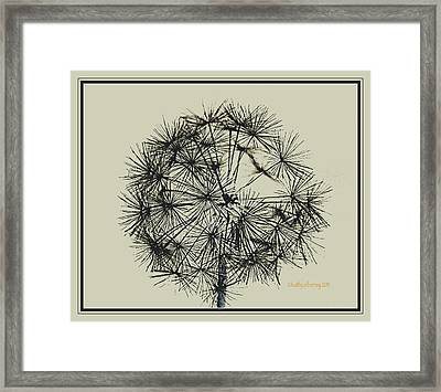 Framed Print featuring the photograph Dandelion 6 by Kathy Barney