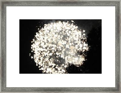 Dandelion Ablaze Framed Print