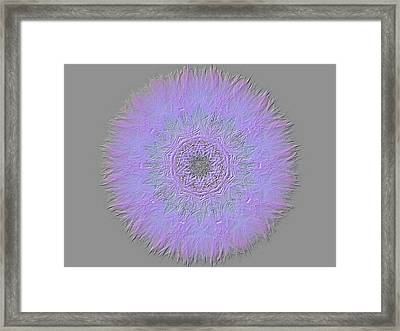 Dandelion Abstract Framed Print by Sherman Perry