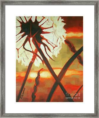 Dandelion At Last Light Framed Print
