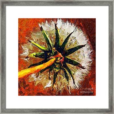 Dandelion Clock Framed Print by Dragica  Micki Fortuna