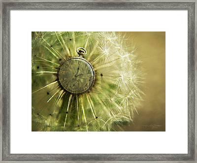 Dandelion Clock II Framed Print by Karen Casey-Smith