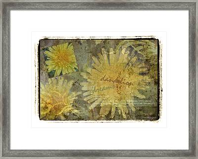 Dandelion Dreams Framed Print by Terri Harper