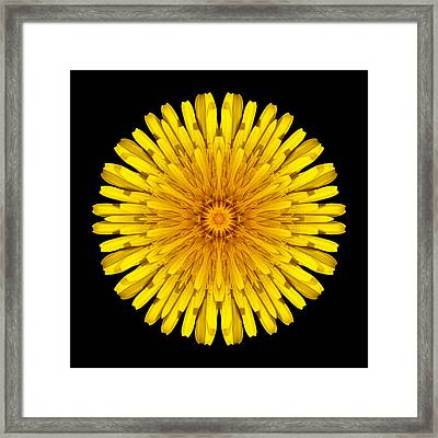 Framed Print featuring the photograph Dandelion Flower Mandala by David J Bookbinder