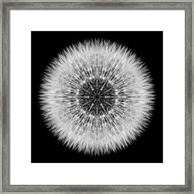 Framed Print featuring the photograph Dandelion Head Flower Mandala by David J Bookbinder