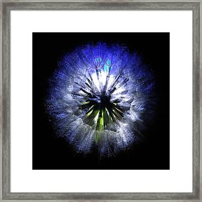 Dandelion Landscape - Square Framed Print