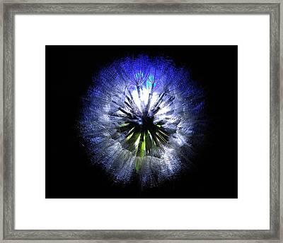 Dandelion Landscape Framed Print