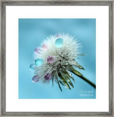 Dandelion Princess Framed Print by Krissy Katsimbras