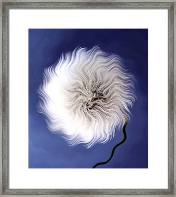 Dandelion Waves Framed Print by Krissy Katsimbras