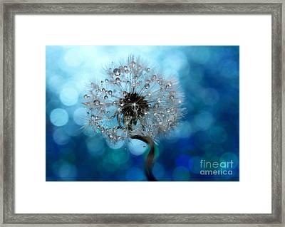 Dandelion Whisper Framed Print by Krissy Katsimbras