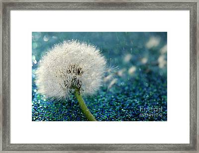 Dandelion Wishes Framed Print by Krissy Katsimbras