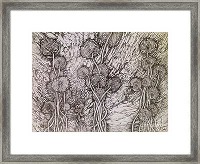 Framed Print featuring the drawing Dandelions by Iya Carson