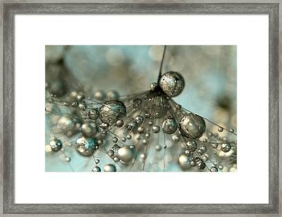 Dandy In Silver And Blue Framed Print