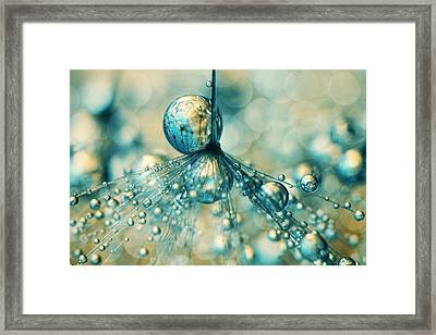 Dandy Sprinkle Framed Print