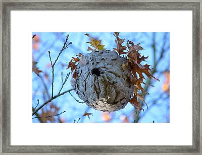 Framed Print featuring the photograph Danger Zone by Tikvah's Hope