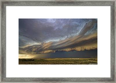 Dangerous Beauty Framed Print