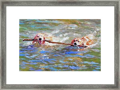 Da152 Sticking Together By Daniel Adams Framed Print